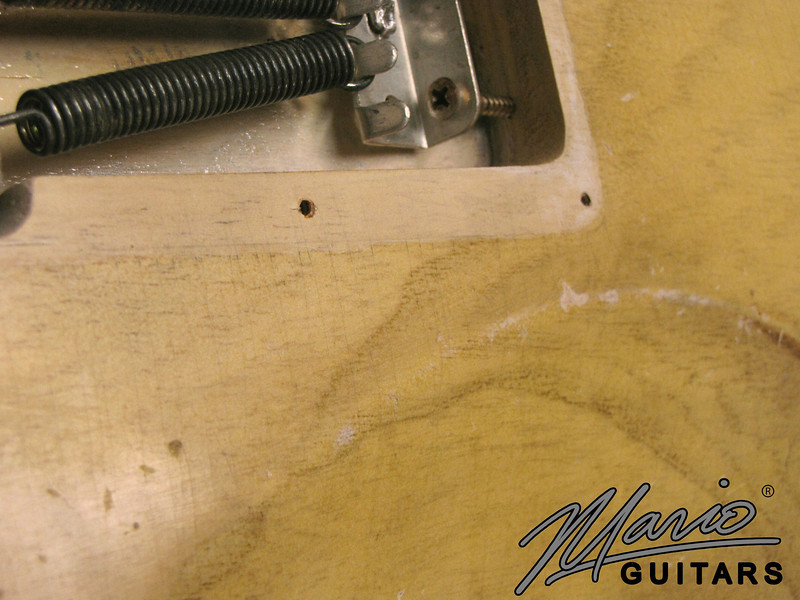 Mario Martin Mario Guitars Aged Relic T for Matte Henderson 10.-L